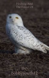 Hedwig and the Forest of Alsder by bobbysouth12