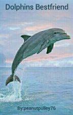Dolphins Bestfriend by peanutpulley76