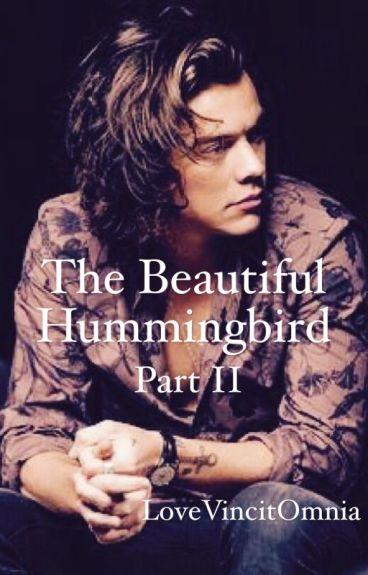The Beautiful Hummingbird - Part II