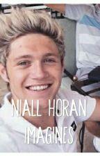 Niall Horan Imagines  by niallerbabes