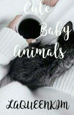 Cute Baby Animals by KimDaDino