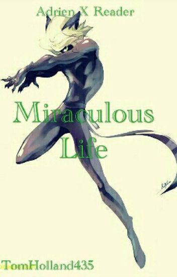 miraculous life adrienchatnoir x reader  matarnixarts