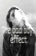 The bad boys effect by Emilie484