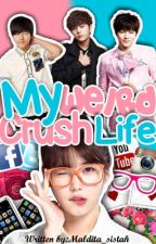 My Weird Crush Life by ztrjfstn
