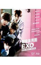 EXO NEXT DOOR by vxchan