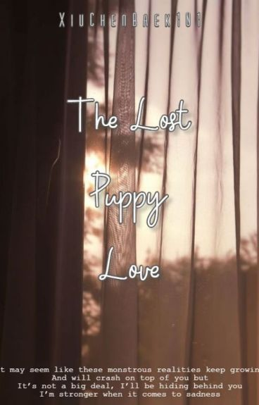 The Lost Puppy Love