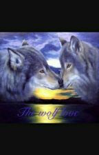 The Wolf Love by Francy_dinnocente
