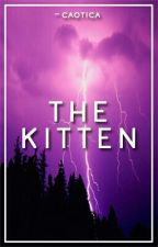 The Kitten //ot4// by -caotica