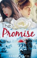 The Promise by senpoitato