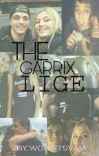 THE GARRIX LIGE; by woahitsvam