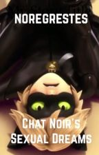 Chat Noir's Sexual Dreams by noregrestes