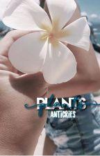 plants // [n.m.] by anticries
