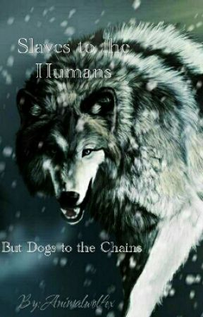 Slaves to the Humans, But Dogs To The Chains /On Temporary Holden/ by Animalwolfex