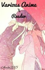 Anime X Reader REQUEST OPEN by Aerla235