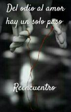 Del odio al amor hay un solo paso: Reencuentro  by Vaelica