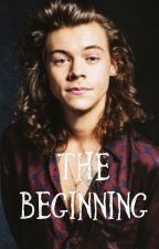 The Beginning (Completed H.S Fanfic) by savannah1180