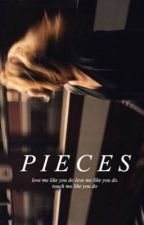 Pieces ➳ {z.m}  by TheMarvelD