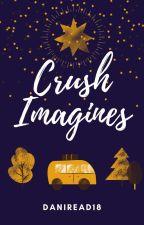 Crush x Reader - One Shots by DaniRead18