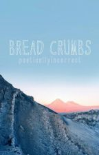 bread crumbs by poeticallyincorrect