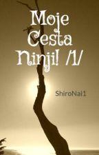 Moje Cesta Ninji! /1/ by ShiroNai1