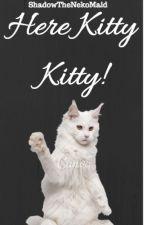 Here Kitty Kitty~! by ShadowTheNekoMaid