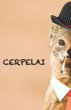 CERPELAI by faishal_is_hiding