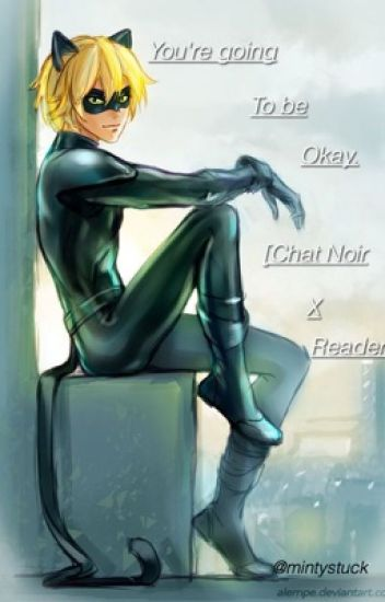 You're going to be okay. [Chat Noir x Reader]