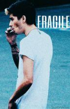 Fragile | z.m by zustinsrise
