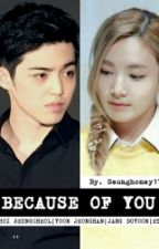 BECAUSE OF YOU [SeungcheolXJeonghan] by Seunghoney17