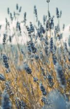 sessizlik //destiel by AngeList1