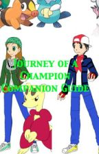 """The Journey of a Champion"" Character Descriptions by MoonCrane098"