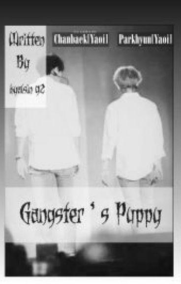 Gangster's Puppy(Chanbaek/Baekyeol-Yaoi)
