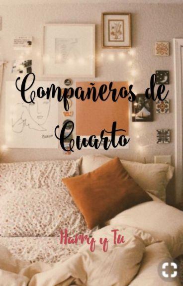 Compañeros De Cuarto {HARRY Y TU} NO ES MIA