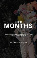 SIX MONTHS | ZODIAC STORY by amieegrace