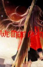 We Meet Again... (Sequel to SRKS) by PunkAngel1245