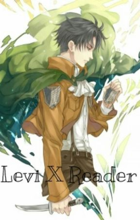 Levi X Reader - Versus Petra - Wattpad