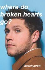 where do broken hearts go? ; n.h by -peachypratt