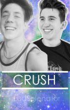 Crush - Castondar.Mariano Bondar y Lucas Castel. by LudJimenez