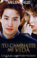 Tu Cambiaste Mi Vida (Sulay) by MelSnchez0