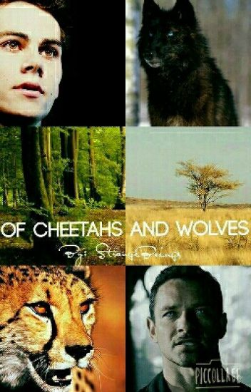 Of Cheetahs and Wolves [Haitus 'till one day]