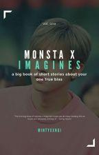 BIG BOOK OF MONSTA X by mintyxxngi