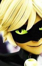 Miraculous LadyBug: Mi travieso gato negro (Chat Noir y Tu) by HermanosAqua02