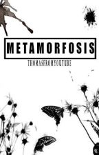 METAMORFOSIS by Thomasfromyoutube