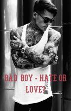 Bad Boy - Hate or Love?  *Abgeschlossen* by Hurricane603