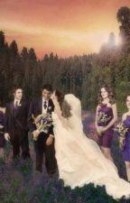 The wedding by BrebreNixon