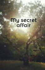 My secret affair by Funnymonkey123