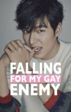 Falling For My Gay Enemy by zerously