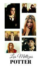 Los Mellizos Potter |Cancelada| by Chorra_De_Panes