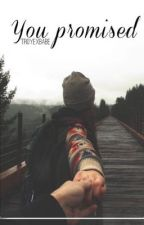YOU PROMISED | Shawn Mendes Tłumaczenie PL by troyexbabe