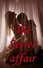 The Secret Affair by naughtychic
